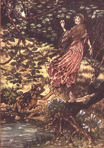 1911_folkard_frog